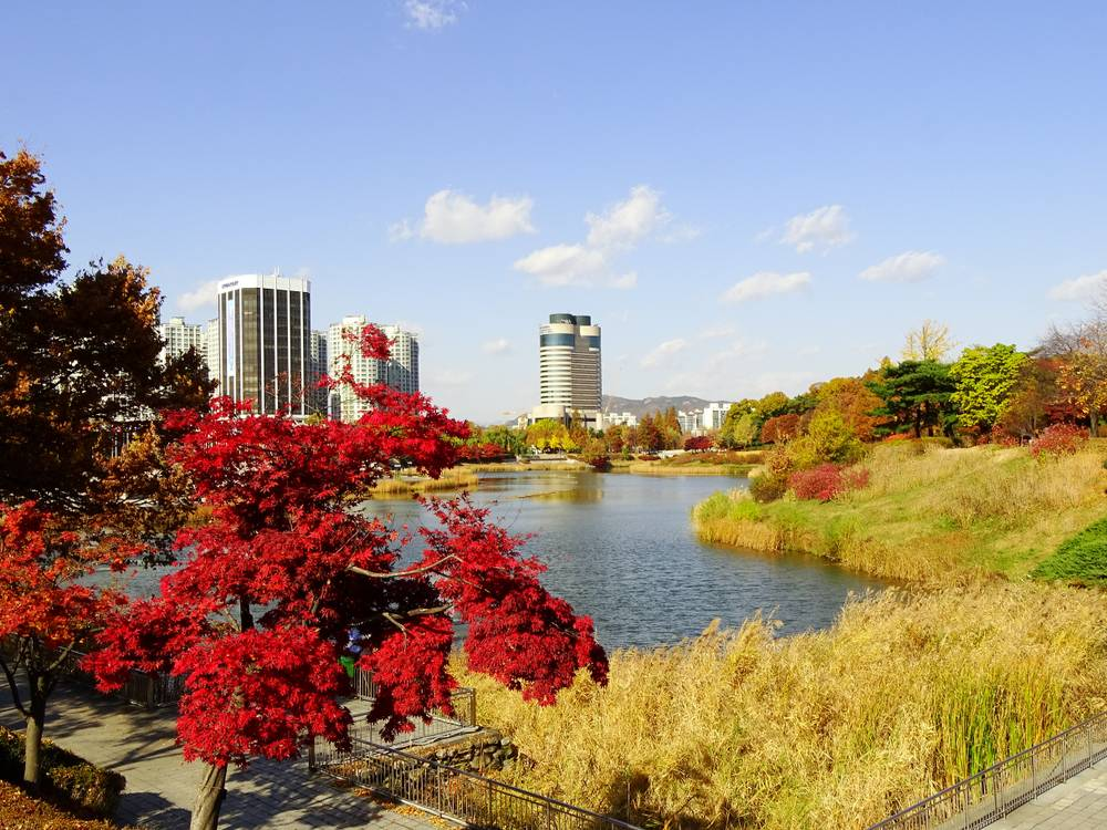 South Korea Travel Jamsil Olympic Park Historic Chill Picnic Stroll Shopping Lake Nature Metropolis Scenic