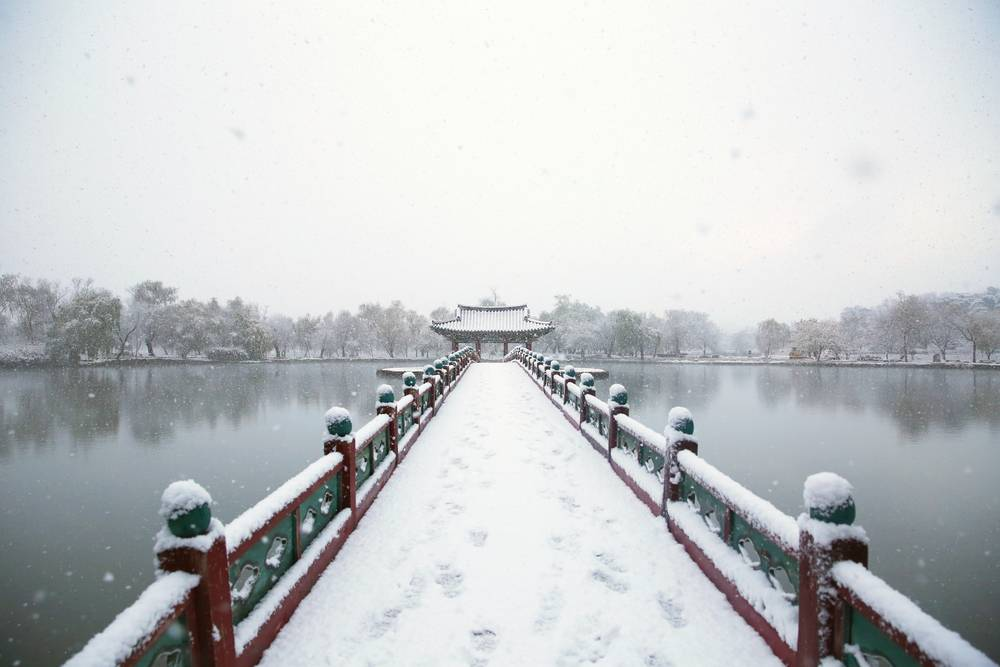 South Korea Travel Buyeo Historic History Gungnamji Pond Winter Snow Scenic Beautiful Tourist Attraction
